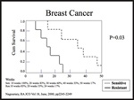 Breast Cancer Survival Curve