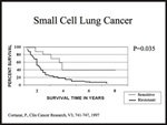 Small Cell Lung Caner Survival Curve