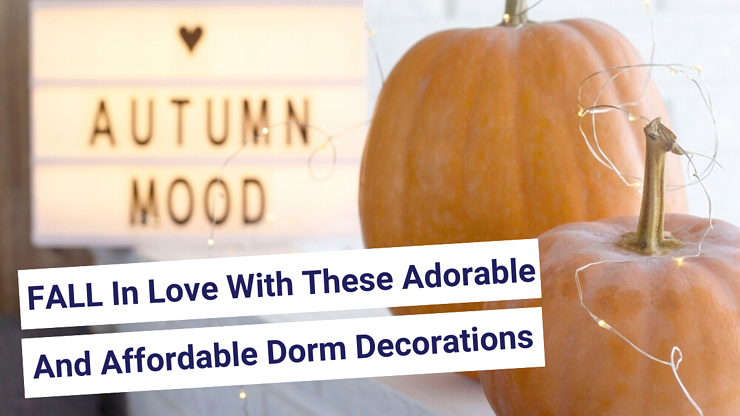 FALL In Love With These Adorable And Affordable Dorm Decorations