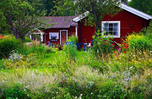 Meadow-Garden-steps (3)