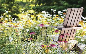 meadow-garden-1