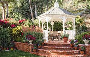mature-garden