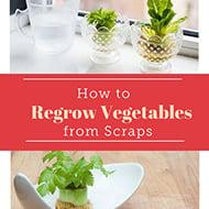 1.-veggies