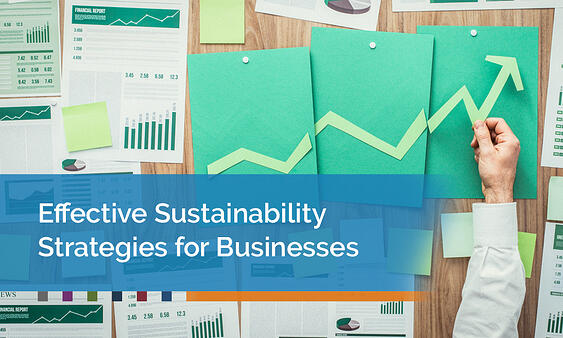 Effective-Sustainability-Strategies-for-Businesses