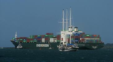 Evergreen liner