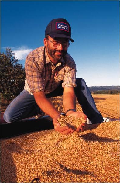 export grain