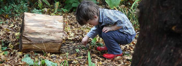 The World Is Your Canvas. Using Outdoor Play To Promote Creativity