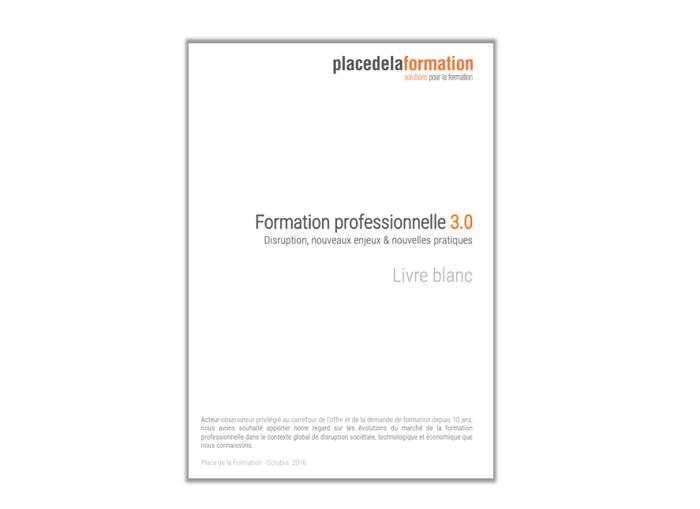 Livre Blanc : «Formation professionnelle 3.0 : Disruption, nouveaux enjeux & nouvelles pratiques »