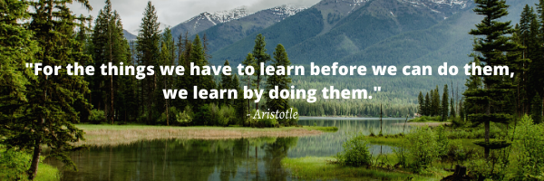 For the things we have to learn before we can do them, we learn by doing them. - Aristotle-1