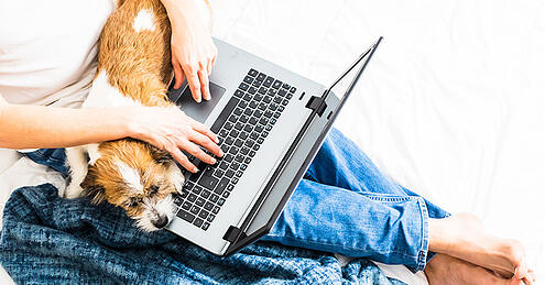 5 Ways Your Dog Can Keep You On-Task During Remote Work