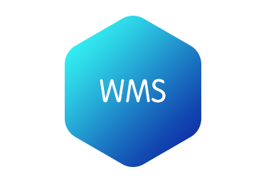 Qualified WMS Product Manager