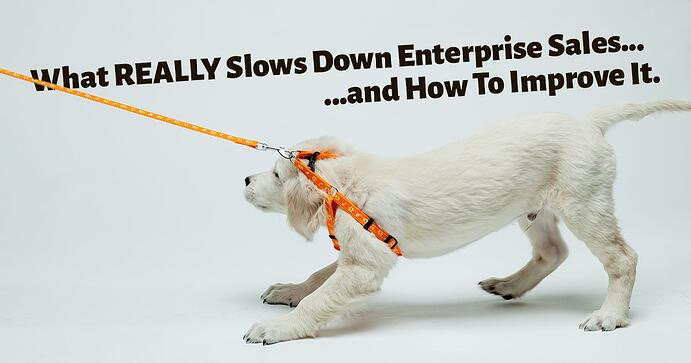 What Really Slows Down Enterprise Sales - And How to Improve It