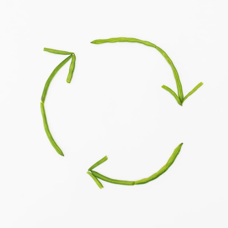 5 Practical Ways to Avoid Food Waste