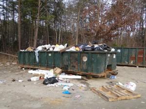 dumpster-view-300x225