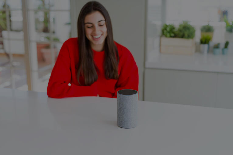 Why is Voice the Future?