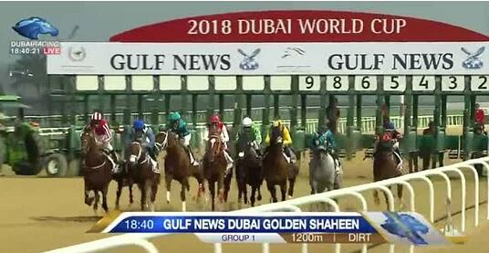 Dubai World Cup Starting Gate