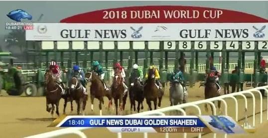 Dubai World Cup Starting Gate
