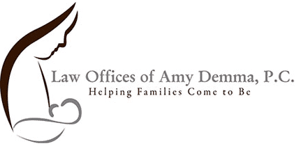 law offices of amy demma
