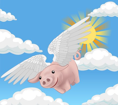 Medical Monday   If Pigs Can Fly   Infertility Information