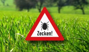 zecken_tiere_578x283