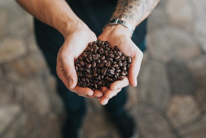 Start-Ups Are Bringing A Personalized DTC Experience To 4th Wave Coffee