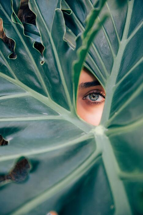 Beauty Gets Personal – But Vegan Is Still Overlooked