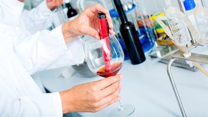 Fases de la filtración del vino para una producción eficiente