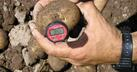 Tubers arriving at over 30°C stop growing and present irregularities when growth resumes.
