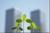 Verlaagd tarief van 6% voor bloemen en planten, voortaan ook bij tuinaanleg en -onderhoud