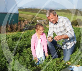 Multigenerational Wealth Management (preparing children for inheritance)