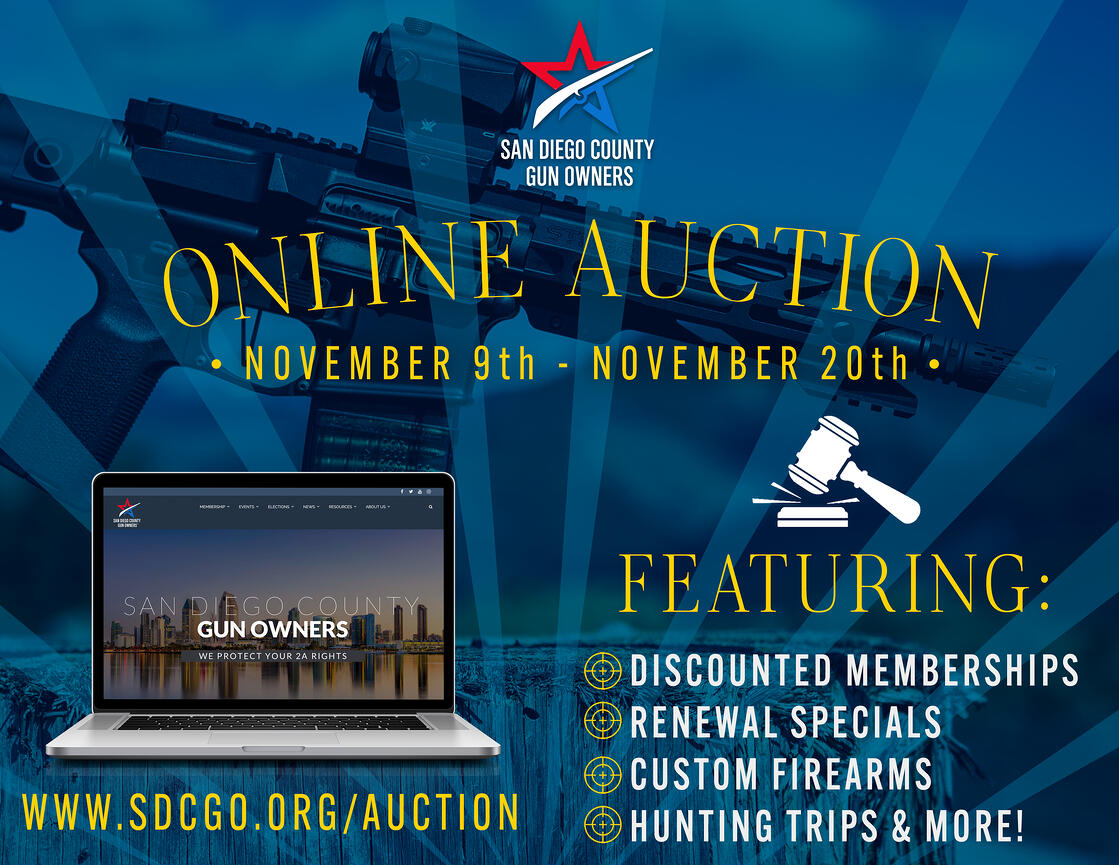 Online Auction.2-1