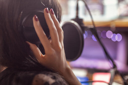 Cost of Professional Voice Talent