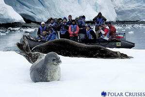Travel Tips for Antarctic Cruising