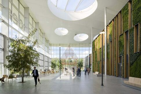 Here's Why Green Offices Should Become a Norm