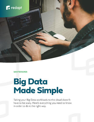 big-data-made-simple_redapt_2019WP-Preview1
