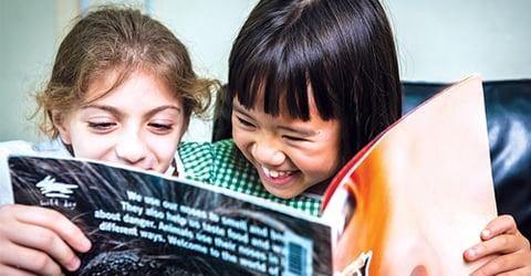Inspiring Must-Read Books for Expatriates