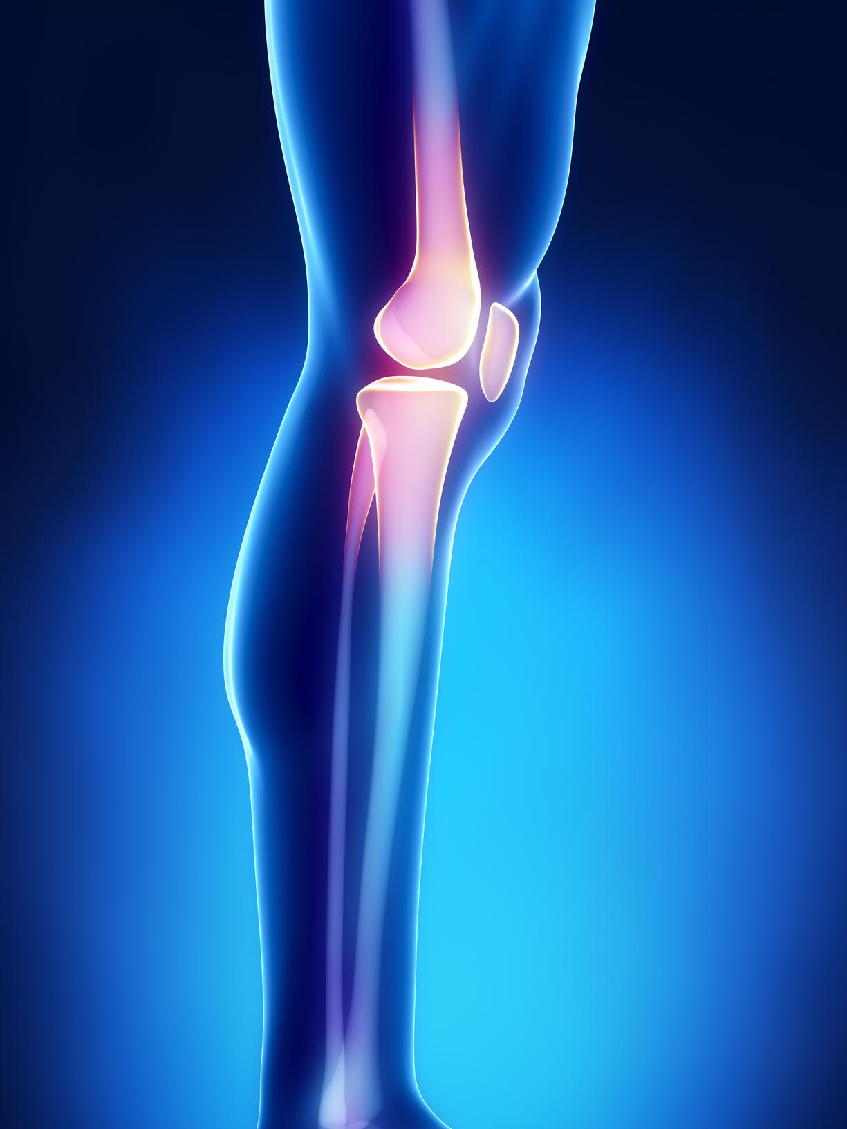 orthopedic templating software - orthopedics emr ehr software prognocis revenuexl