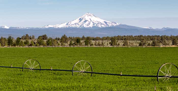 Northwest Farm Credit Services Agricultural Lending Program