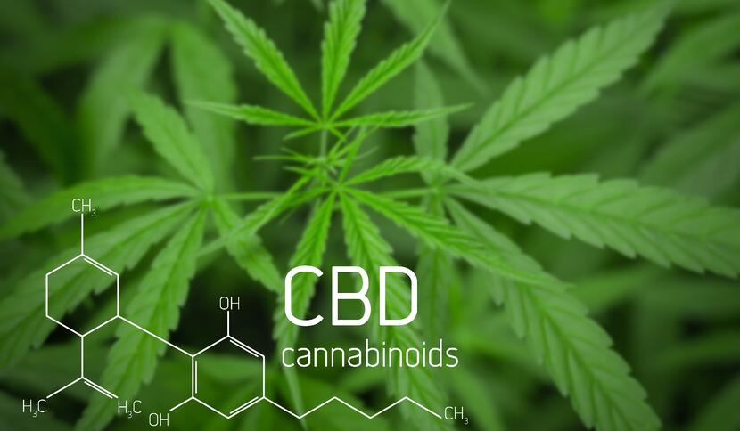 Tips and Tidbits About Common and Not So Common Cannabinoid Receptors