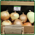 Sweet Onions from EZ Farming