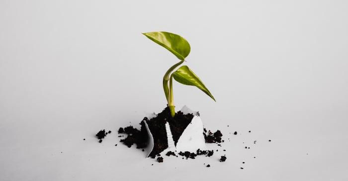 Has your business outgrown Xero?