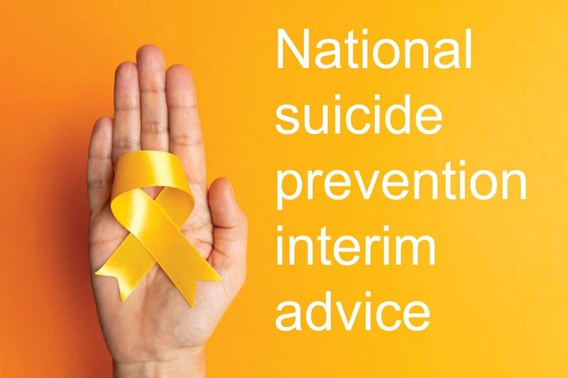 national suicide prevention interim advice