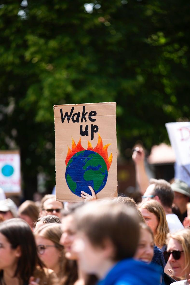 Verantwortung in der Schädlingsbekämpfung – gegenüber Umwelt, Tierwelt & Mitmenschen