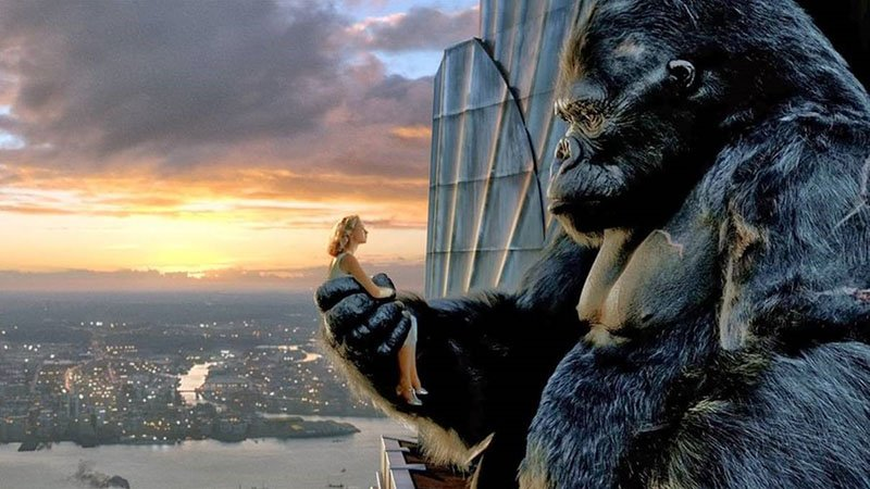 """Profit is King, but Cash is King Kong!"""