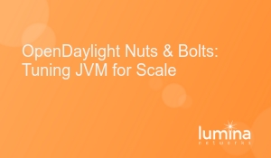 OpenDaylight-Nuts-and-Bolts-Tuning-JVM-for-Scale