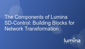 The Components of Lumina SD-Control- Building Blocks for Network Transformation