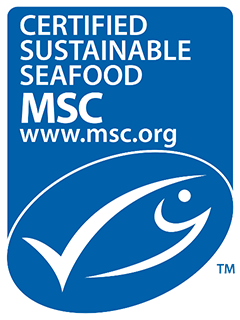 First Squid Fishery In The World Certified As Sustainable