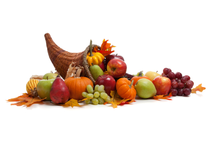 5 Thanksgiving Tips by Cybex