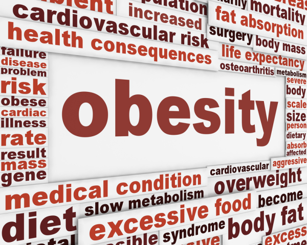 Establishing the links between obesity and chronic health problems resized 600