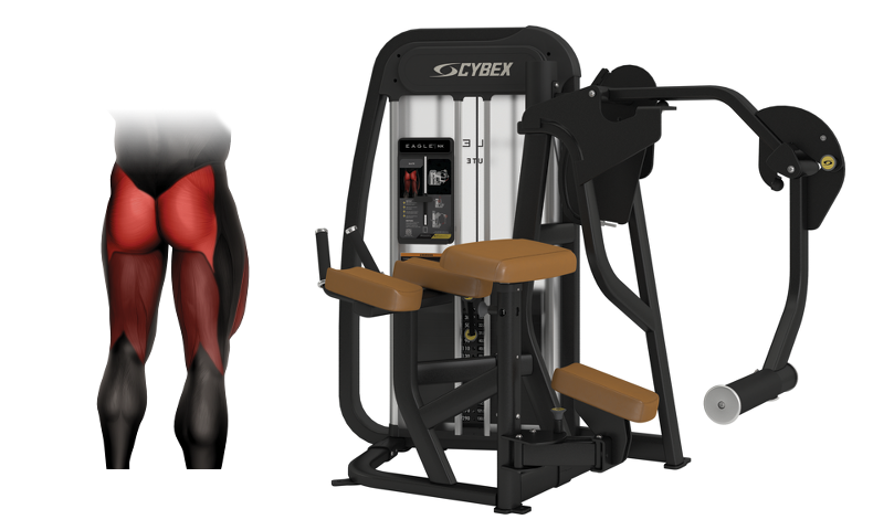 Workout Your Glutes on the Cybex Eagle NX